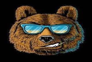 сертификат-яндекс-директ